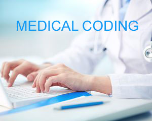 PROFESSIONAL MEDICAL CODER